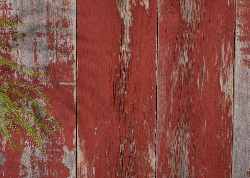 Bardage Monolame Bois Us Campagne Vieilli Peint Rouge Léger Chant Ancien ou DéLigné d'Origine